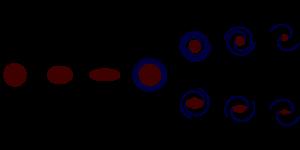 Diagram garpu tala